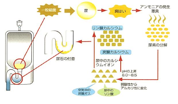 クリーンエクセル_説明図